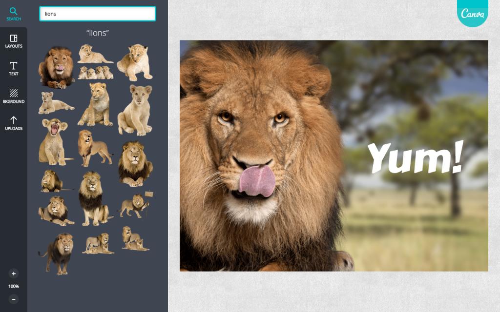 Lion Screenshot