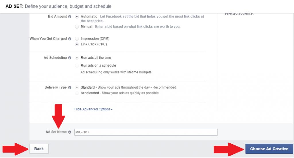 adsManager-budget5