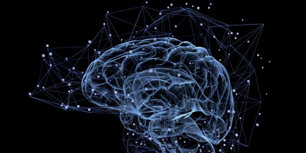 principi za neuro web dizajn