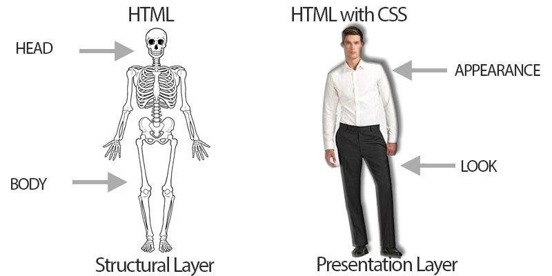 sceleton HTML